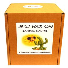 Grow Your Own Colourful Flowering Cactus Plant Kit - Planting kit for children and adults Barrel Cactus, Garden Gifts, Grow Your Own, Cactus Plants, Planting, Fathers Day, Kit, Children, Birthday