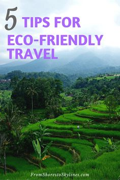 5 easy ways to be eco-friendly while traveling