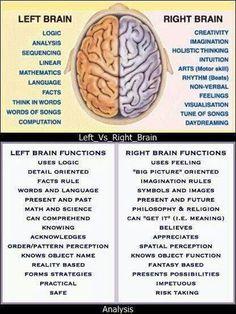 Left Brain vs Right Brain. Importance of Improving the Right Brain Skills - Awaken Mindset Brain Anatomy, Anatomy And Physiology, Health Tips, Health And Wellness, Health Fitness, Infj, Left Vs Right Brain, Brain Facts, Brain Health