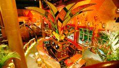 - Bongos Cuban Cafe Miami