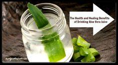 The Health and Healing Benefits of Drinking Aloe Vera Juice | www.beautyandthefoodie.com