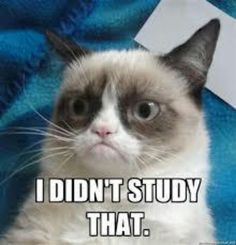 How I felt the whole way through nursing school....
