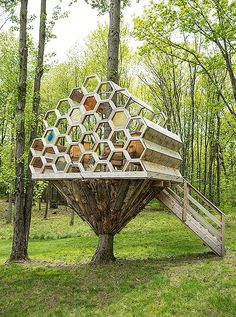 "Brett worked with a local carpenter to construct her ""bee house,"" an…"
