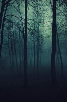 imagenes tumblr bosque - Buscar con Google