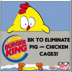 #csr Cage-free promise: #BurgerKing has pledged that all of its pork and eggs will come from cage-free chickens and pigs within the next five years. The Burger King cage-free promise marks a huge step in the shift toward more humane treatment of livestock.   http://www.brandchannel.com/home/post/2012/04/25/Burger-King-Cage-Free-042512.aspx