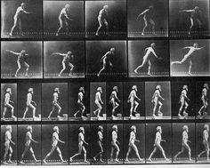 Autoportraits de photographes Muybridge photo photographie featured art