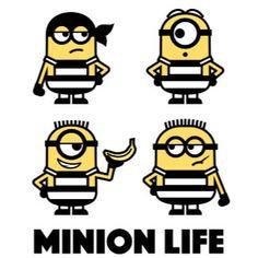 The Minions - Minion Life Minions Funny Images, Minions Quotes, Funny Minion, Funny Pics, Funny Jokes, Minions Movie Characters, Minion Movie, Evil Minions, Minions Despicable Me