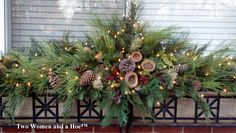 photos of container flowers | decorating, winter greens, winter containers, holiday containers ...