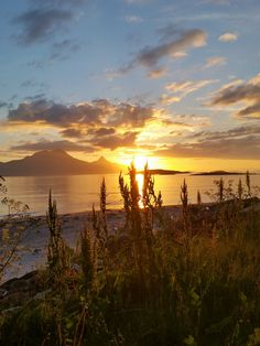 Sunset, Bodø, Norway.