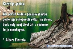 Everything And Nothing, Carpe Diem, Albert Einstein, Thoughts, Humor, Words, Quotes, Motivational, Book
