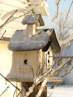 *birdhouse charming in winter