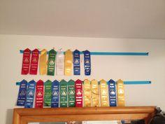 Swim team ribbon display holder for jakes room Award Ribbon Display, Award Display, Swim Ribbons, Martial Arts Belt Display, Medal Ribbon, Swim Team, 4 H, Girl Room, Arts And Crafts