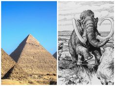 8 Surprising Historical Facts That Will Change Your Concept Of Time Forever-- 4. The Pyramids of Giza were built in the time of wooly mammoths.