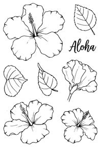 Loving these gorgeous Jane's Doodles Hibiscus flowers! Hibiscus Flower Drawing, Hibiscus Flower Tattoos, Plumeria Tattoo, Blue Lotus Flower, Hibiscus Plant, Floral Drawing, Hibiscus Flowers, Flower Art, Hawaii Flowers Drawing