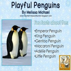 This freebie features information pages about these penguin species: Emperor, King, Gentoo, Adelie, Macaroni and Little.