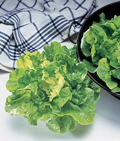 English heirloom butterhead's yellowish-lime-colored leaves have mild, creamy taste. Mixed Vegetables, Growing Vegetables, Fruits And Veggies, Heirloom Tomatoes, Cherry Tomatoes, Burpee Seeds, Lettuce Seeds, Edible Plants, Slow Food