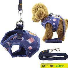 Cool Stylish Adjustable Denim Vest Dog Puppy Cat Pet Harness and Leash Set for Dogs Cats Pets (A) -- You can get additional details at the image link. (This is an affiliate link) #Cats