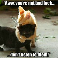 You're not bad luck....