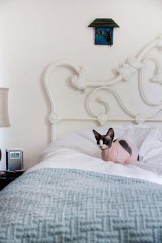 House Tour: Tiny Austin Studio Apartment | Apartment Therapy