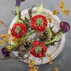 #pear#Calla#Zanthedeschia #Eyeliner #Celastrus #Rose #FlashEye: Flowers are available at www.barendsen.nl