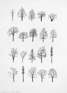 "Katie Holten has made a series of tree drawings. In 2015 she created a ""Tree Alphabet"" and published the book ""About Trees"". A series of tree drawings was commissioned by the Zentrum Paul Klee for the group exhibition ""About Trees"" in tree tattoo Simple Tree Tattoo, Tree Drawing Simple, Simple Tats, Tree Tattoo Back, Oak Tree Tattoo, Pine Tattoo, Et Tattoo, Raven Tattoo, Tattoo Soeur"