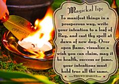 witch, spells, white magick, manifestation, manifest, law of attraction, book of shadows, enchanted, goddess, metaphysical, Bay Leaf, herbalist, flame, occult, Sage, herbs, magickal tip, witchy, cauldron, prayer, moon, New moon, jenna caprice, www.whitewitchparlour.com