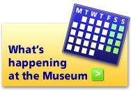Fernbank Museum of Natural History (Atlanta) - must take Taryn!