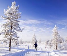 Helsinki, Finland -- The wilderness Urho Kekkonen National Park, a 90-minute flight from Helsinki, is an actual winter wonderland: traverse the frosty landscape via a reindeer-pulled sled, or go cross-country skiing on the Saariselkä trails.