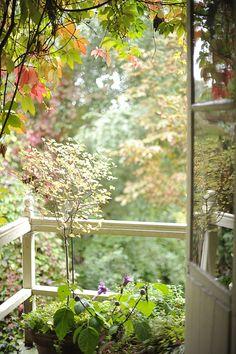 fenêtre...