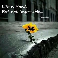 Every thing is possible if we really work hard of it.  http://adeptechno.com/