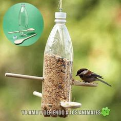 UPcycled bird feeder. #putabirdonit