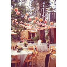 Outdoors Sierra Nevada Wedding ❤ liked on Polyvore featuring home and outdoors
