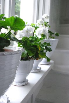 White flowers in white bowls - simple and beautiful