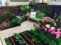 Hedgehog Street Garden #ptes #hedgehogstreet #WIFair #harrogate Hedgehog, Gardens, Patio, Street, Outdoor Decor, Home Decor, Decoration Home, Room Decor, Outdoor Gardens