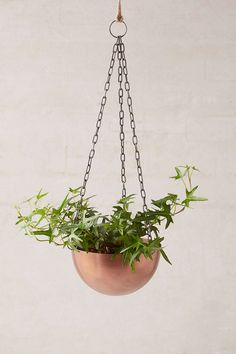 Hanging Brass Planter - Urban Outfitters
