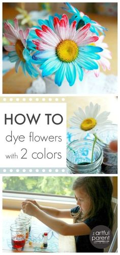 This takes the flower dye experiment to a whole new level!