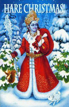 Hare Christmas ! #krishna #xmas