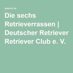 Die sechs Retrieverrassen | Deutscher Retriever Club e. V.