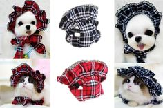 Lillypet(TM) SET - 2pcs Pet Plaid Hat with Lace for Small Dogs and Cats Party Maid Costume Headwear *** You can find more details by visiting the image link. (This is an affiliate link and I receive a commission for the sales)
