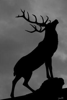 hart deer stag sculpture hartlepool marina bw