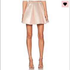 New Dress Gallery shiny light pink skater skirt 36 New, bought at Revolve.com. Only worn when try on. Too big on me. Sold out everywhere . Size 36= small Revolve Skirts