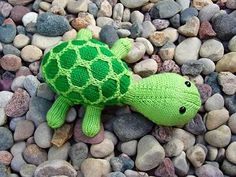 tortue tricot