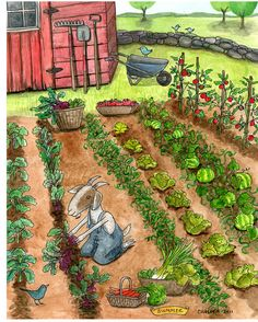 5 x 7 print of a watercolor. Farm Themed Art 🌱Start your own vegetable garden! Garden Drawing, Garden Painting, Garden Art, Gravure Illustration, Garden Illustration, Fauna, Whimsical Art, Vegetable Garden, Amazing Art