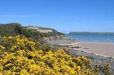 Beach at Hawkers Cove, Cornwall