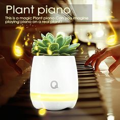 Play Piano on a Real Plant Festival Gift Flowerpot Night Light Smart Touch Music Plant Lamp Rechargeable Wireless Happy Birthday Song *** Check out the image by visiting the link.