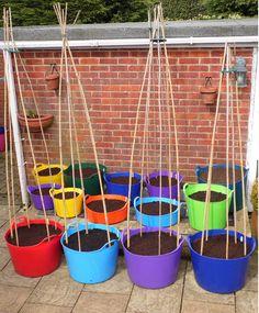 A Rainbow Garden!! www.rainbowtrugs.com Rainbow Garden, Baby Tomatoes, Outdoor Learning, Rainbows, Container Gardening, Garden Ideas, Lab, Goodies, Party Ideas