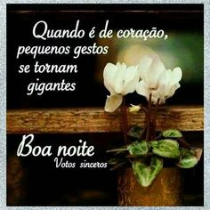 The perfect BoaNoite Goodnight Butterfly Animated GIF for your conversation. Discover and Share the best GIFs on Tenor. Portuguese Quotes, Quotes Gif, Sweetest Day, Flower Quotes, Adventure Quotes, Flirting Quotes, Motivation Inspiration, Good Night, Instagram