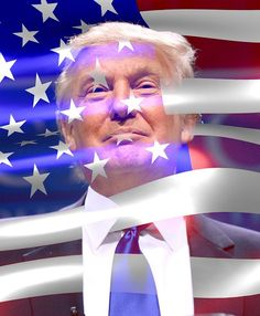 Donald Trump has all but locked up the republican nomination. But, can Donald Trump be president of the United States of America? Trump Flag, Trump Sign, Donald Trump, Professor, American Flag Pictures, Trump American, Hanging Canvas, Fleece Throw, Presidential Election