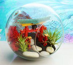 Attractive Japanese Garden Terrarium With Airplants By BeachCottageBoutique, $45.00