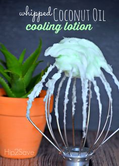 Whipped Coconut Oil Cooling Lotion Hip2Save